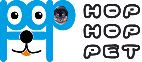 فروشگاه هاپ هاپ پت | فروش سگ گربه | حیوانات خانگی | سگ آپارتمانی | سگ نگهبان | گربه خانگی شمال تهران | سگ مولد | توله پاپی